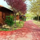 Hut - Bungalow with garden in Albacete