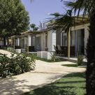 Hut - Bungalow with lunches-dinners in Alicante
