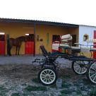 Casa rural cerca de Villarrubia de los Ojos: Humedales de Daimiel