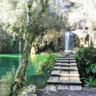 Vivienda Turística de Alojamiento Rural cerca de Besalú: Molí Del Murris