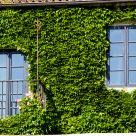 Rural hotel at Pontevedra: Rectoral de Cobres
