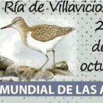 Contacto de Villa Marea