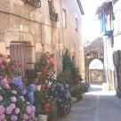 Holiday cottage at Salamanca: Casa Rural La Villa