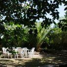 Casa rural cerca de El Catlar de Gaia: L´Abadía de Santes Creus