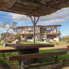 Casa rural cerca de Casasbuenas: Finca Los Pájaros