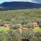 Cabaña - Bungalow cerca de El Carpio de Tajo: Complejo Los Jarales